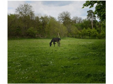 Fekete Zsolt: Székes, 2011, Giclée print, 80x94cm